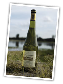 muscadet bords de loire